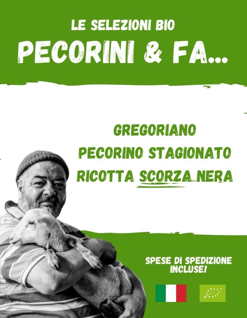 PECORINI E FAVE - La spesa bio da Gregorio Rotolo prodotti biologici, formaggi biologici a latte crudo